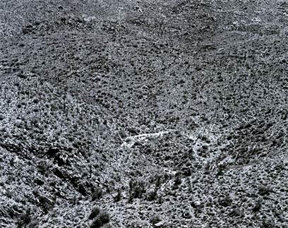 Arizona Landscape, 1943 Frederick Sommer, 1905 - 1999 Gelatin-silver print